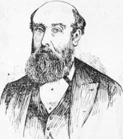 James Stephens (1821-1889), by unknown engraver, 1889